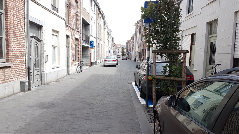 Gata med träd och parkerade bilar på omväxlande sida